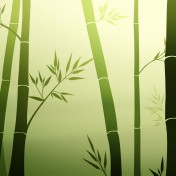 Bamboo iPad Wallpaper