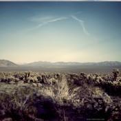 Desert Landscape iPad Wallpaper