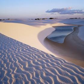 Desert Oasis iPad Wallpaper