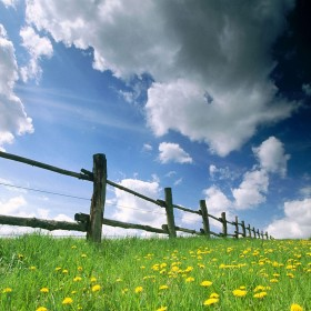 Fence in the Field iPad Wallpaper