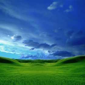 Green Graass Blue Sky iPad Wallpaper