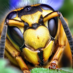 Yellow Hornet iPad Wallpaper