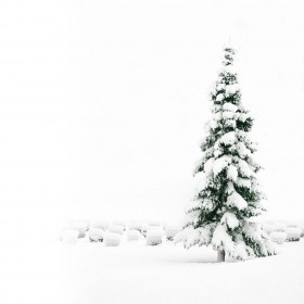 White Christmas iPad Wallpaper