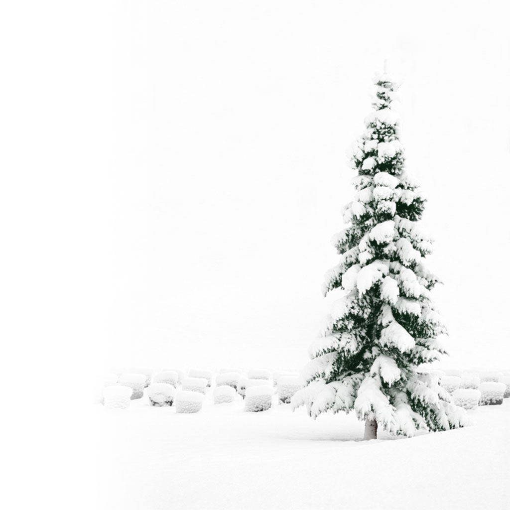 White Christmas iPad Wallpaper | ipadflava.com