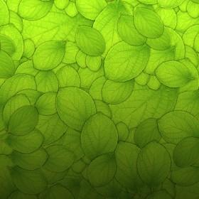 Leaf Pile iPad Wallpaper