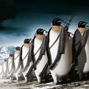 Penguin Army iPad Wallpaper