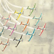 Plane Formation iPad Wallpaper