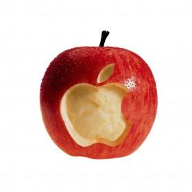 Real Apple iPad Wallpaper