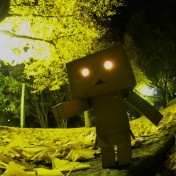 Scary Danbo iPad Wallpaper