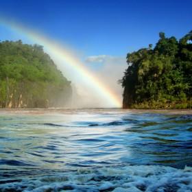 Tropical Rainbow iPad Wallpaper